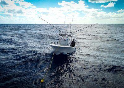 Contender 25T kitefishing in the Atlantic Ocean - Offshore fishing for Pelagics
