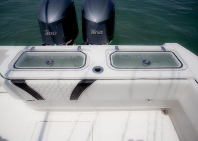 Transom Livewell System
