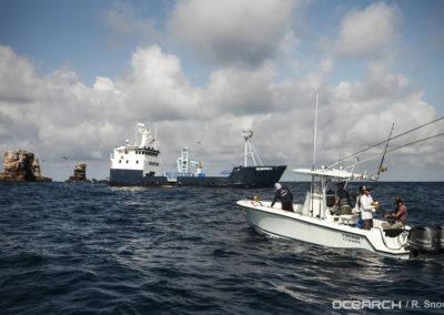 contender-28t-OCEARCH_Galapagos_Darwin_4010
